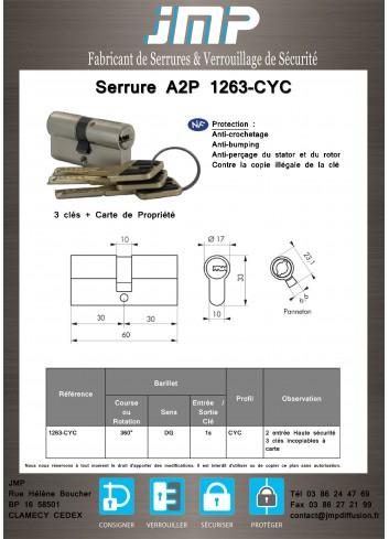 Cylindre anti-bumping 1263-CYC avec carte de propriété A2P - Plan Technique